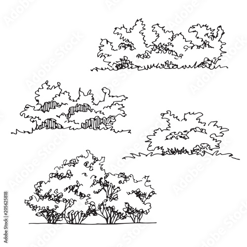 How To Draw Bushes Free Download Oasis Dl Co