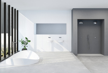 Modern luxury bathroom with sunken tub