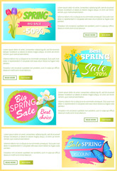 Sale Set of Web Posters Stickers Daffodils Tulips
