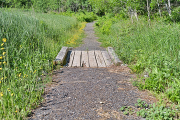 Gravel pathway with wood bridge surrounded by forest and fields.