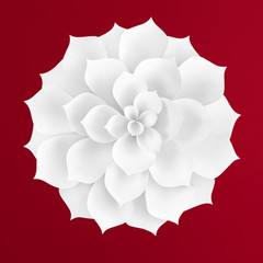 White paper flower on red background