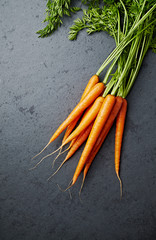 Bunch of Fresh Organic Carrots on stone background
