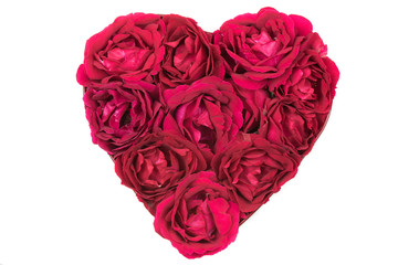 Heart Made of Red Roses Isolated on White Background
