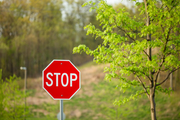 Stop Sign in Parking Lot with Forest Background