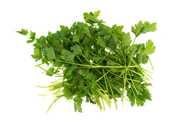 Parsley stalks and leaves on a white background.