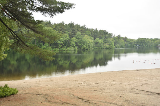 Cute beach on the shore of houghton's pond