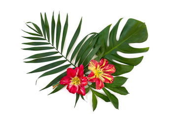 Tropical leaves palm tree and monstera with red yellow flowers on a white background. Top view, flat lay.