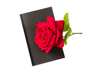 Rose red flower with green leaves stem and black diary on white background top view