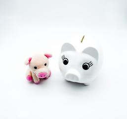 Piggy bank, saving money, cute pig toy