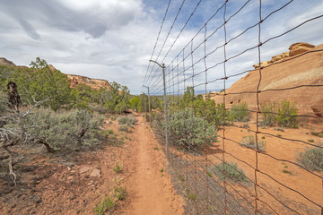Boundary Fence in the Wilderness