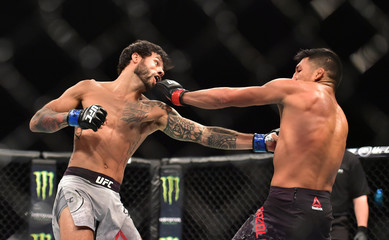 MMA: UFC Fight Night-Barzola vs Davis