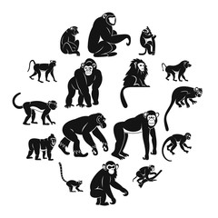 Monkey types icons set. Simple illustration of 16 monkey types vector icons for web