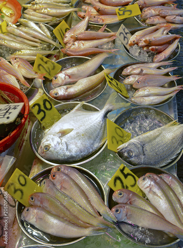 Street food with fresh fish and seafood for sale at Asian market in