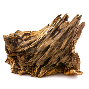 Piece of well worn driftwood on a white background