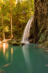 Rainforest stream waterfall in tropical jungle, natural landscape background