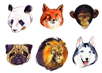 watercolor set of animals isolated on white background