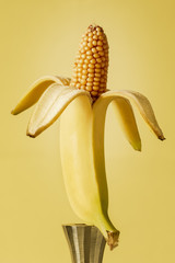 banana is displayed on an iron candlestick from which comes a corn. surealisctic image of food manipulation concept