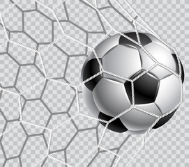Soccer ball in a grid on a transparent background.