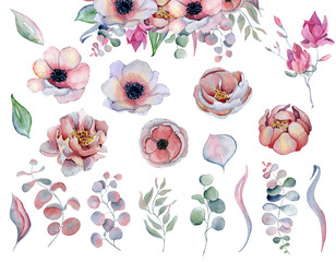 Watercolor anemone peonies flowers and leaves