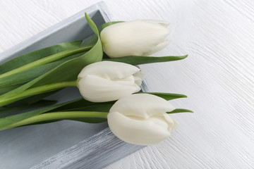 Three white tulip flowers close-up on white wooden desktop with copy space. Natural flowers. Top view.