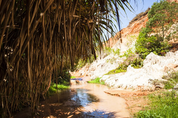 Fairy Stream Canyon Red river between rocks and jungle Mui Ne Vietnam