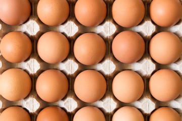 Background of large chicken eggs in a cardboard box. Close up