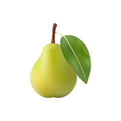 Pear realistic. Vector