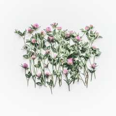 Creative floral layout made of wild flowers on white background. Flat lay, top view, copy space. Flowering red clover , Trifolium pratense. Summer concept