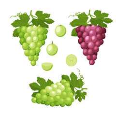 Set of colorful icons of grapes