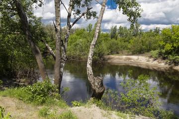 Summer landscape on the river bank. River Oril  . Ukraine
