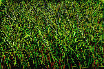 Abstract herbal background of green fine lines