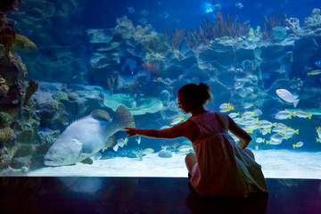 Woman in the oceanarium