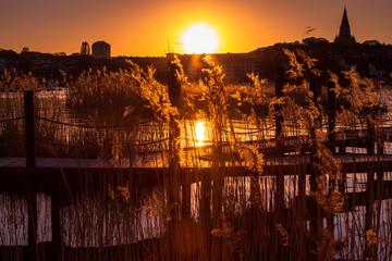 Golden Hour Sjöstaden