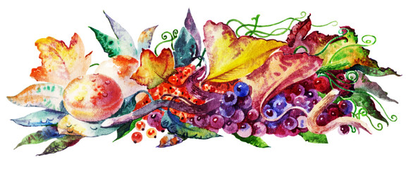 fruits and berries_005