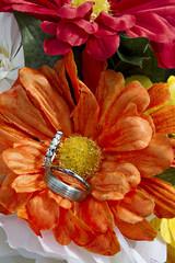 Alliance sur fleur