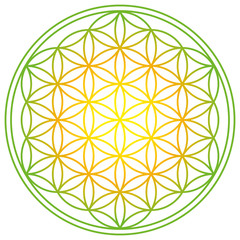 Flower of Life with spring energy colors. Geometrical figure, spiritual symbol and Sacred Geometry. Overlapping circles forming a flower like pattern with symmetrical structure. Illustration. Vector.