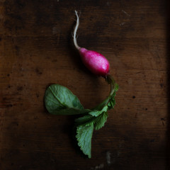 Radishes on rustic background. Top view.