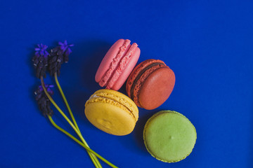 Aluminium Prints Macarons French Colorful pink, yellow, green and brown Macarons flatlay. Colorful Pastel Macarons on bright blue Background with blue purple flowers. Color Schemes. free spot for text