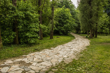 small road in summer park with nobody