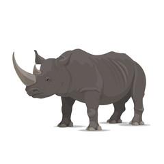 Rhinoceros vector wild animal isolated icon