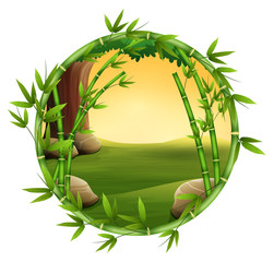 Bamboo trees in frame nature