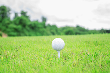 Golf ball with green background.