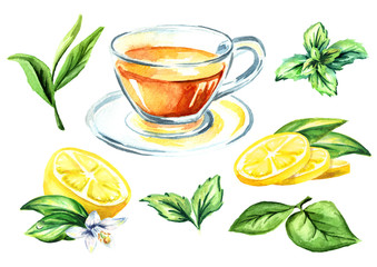 Tea set with cup, lemon, mint and green tea leaves. Watercolor hand drawn illustration, isolated on white background