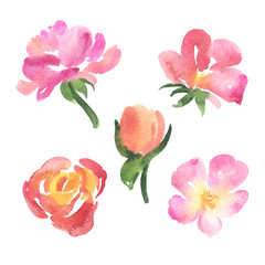 Set of sketch style watercolor pink rose flowers