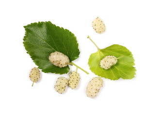 White mulberry fruit with leaves and isolated on white background, top view