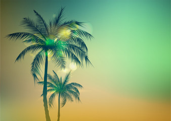 Palm Trees Background.Toned palm trees. Palm background. Vector illustration.EPS10
