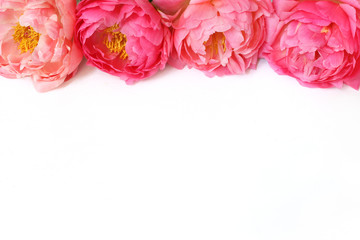Styled stock photo. Feminine floral frame composition. Decorative web banner made of beautiful pink peonies. White background. Empty space. Flat lay, top view. Picture for blog.