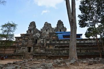 カンボジアのアンコール遺跡群~タ・ケウ