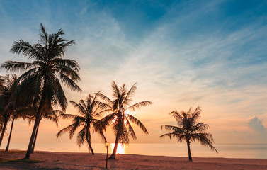 Landscape Beach sand with coconut and sunrise in morning of summer