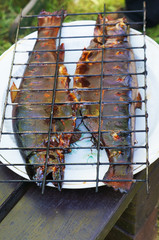 Hot smoked fish under the grill on a white plate on dark boards